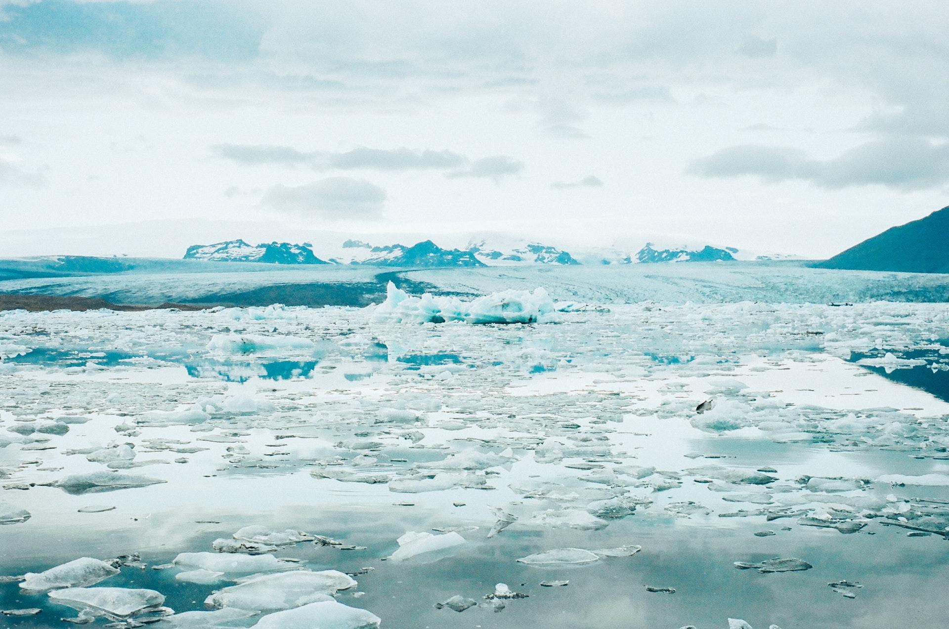 Jagt på Grønland